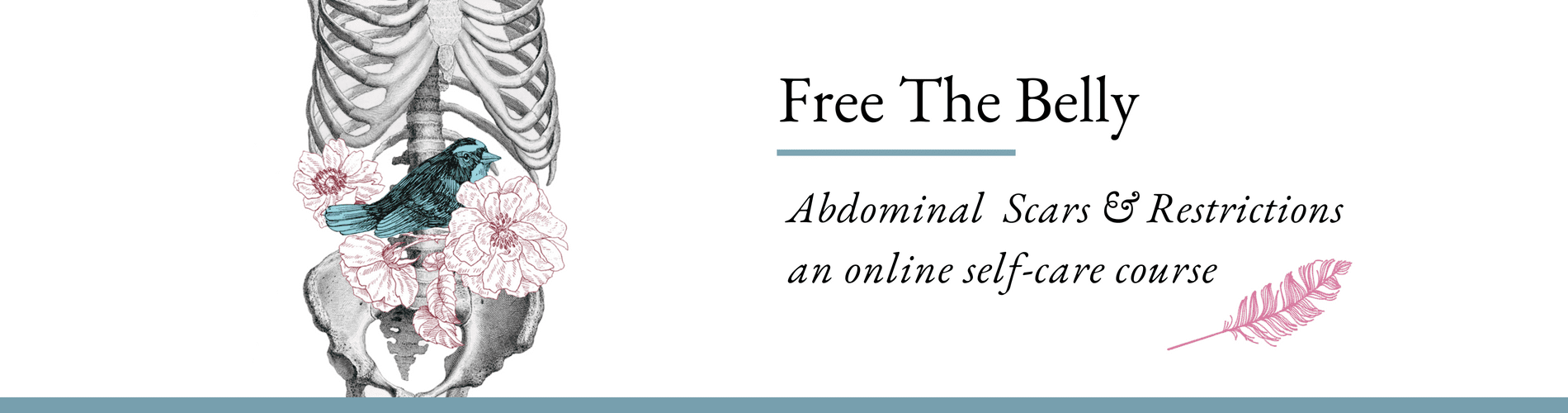 Learn Self Massage For Abdominal Adhesions And Scars Including C